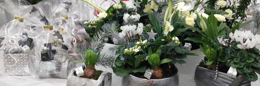 Marché de Noël Octeville sur Mer
