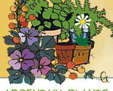 Argentain plants a mis à jour son adresse.